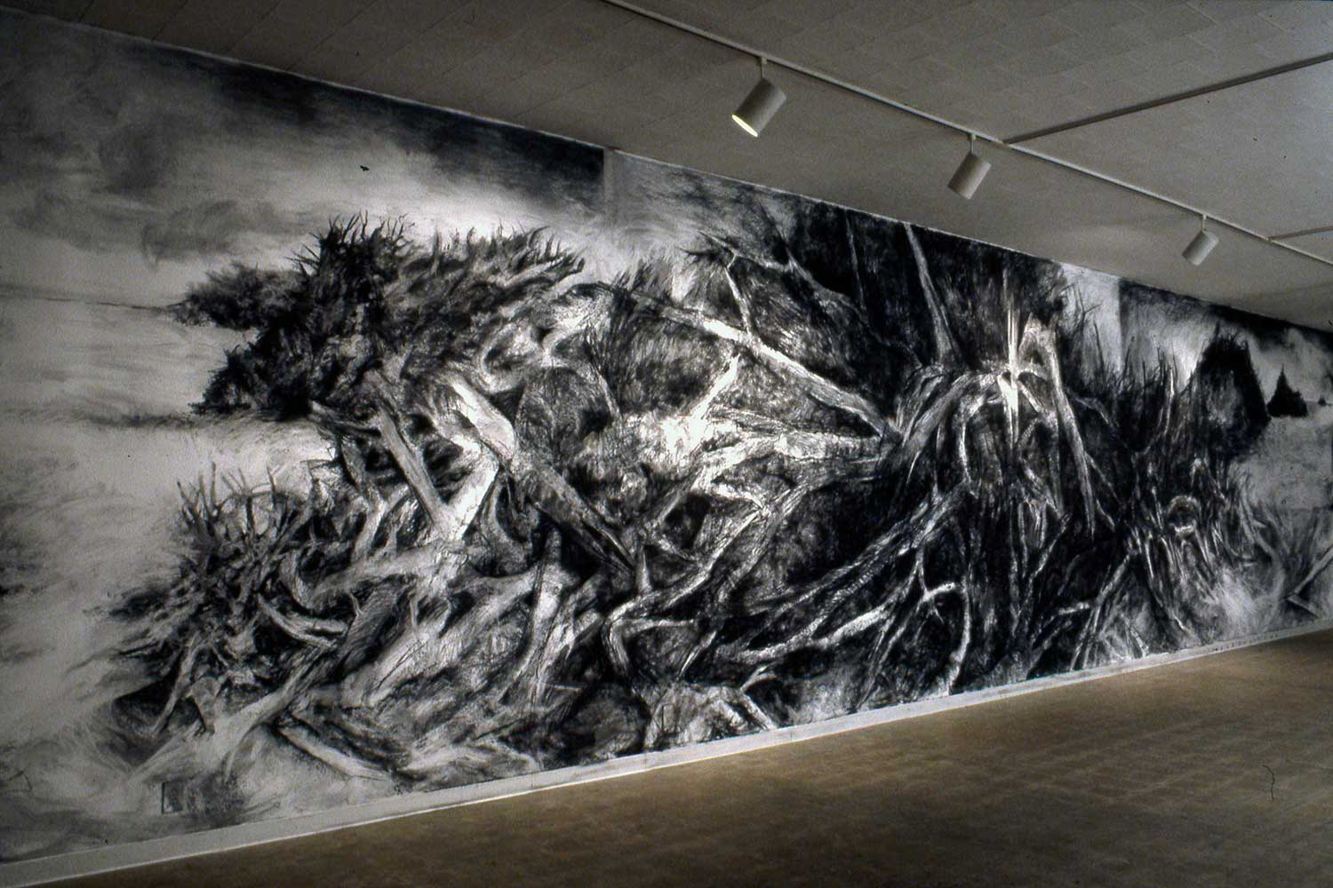 Charcoal on gallery wall 12' x 52', Gallery 25, Fresno CA, 2004